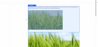 image-resize-handles-static-on-scroll.gif